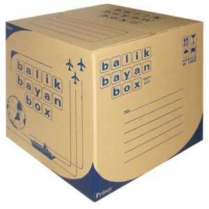 Bien & Myrna Express Cargo – Medium Box