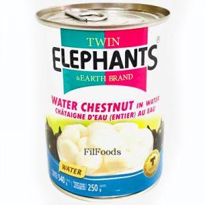 Twin Elephants Water Chestnut in Water 540g