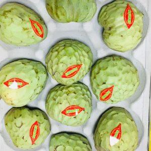 Fresh Anonas (Novo Fruits) 1PC