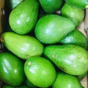 Fresh Avocado Fruit (1PC)