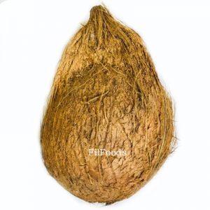 Fresh Niyog (Whole Matured Coconut)
